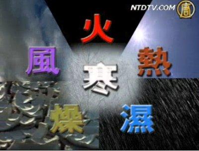 【細語人生】胡醫師談中醫-上集