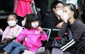 健康樂自在: 植物精油與流感病毒