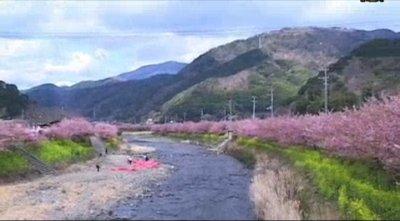 文化采風:日本(7)