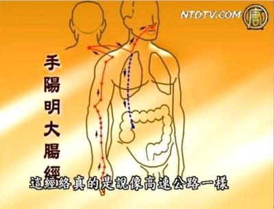 談古論今話中醫:大腸經