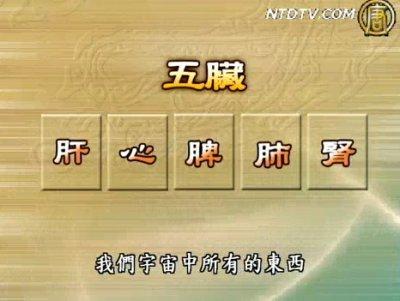 談古論今話中醫 (5):肺經