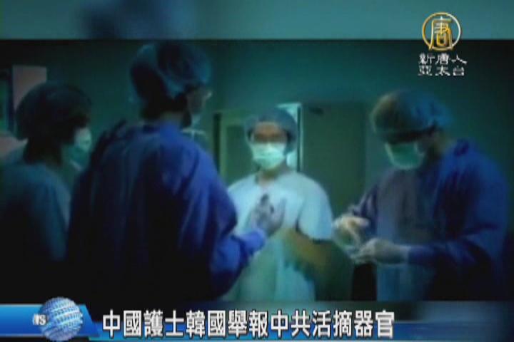中國護士韓國舉報中共活摘器官