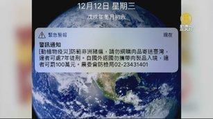 憂非洲豬瘟擴散 台灣首發「國家級警報」