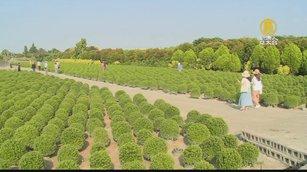 田尾拚觀光轉型 在地協會擬推「農好學院」