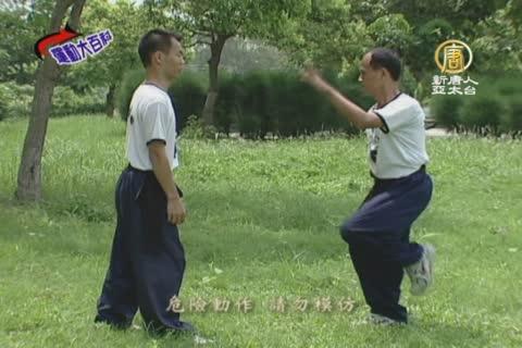 運動大百科 (38) : 南拳 (八)