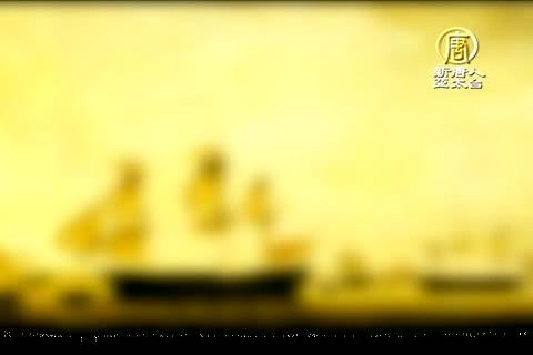 澳洲廣角(527)鵜鶘之鄉